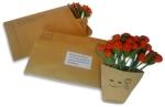Smile Rose - 100 roses